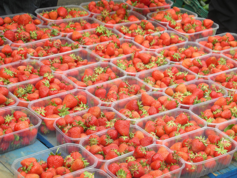 Bute Street farmers Market – jameschatto com